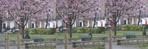 Suffragette - Myddelton Square - MRX 14 15 16